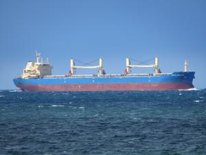 Photo of SILVIA AMBITION ship