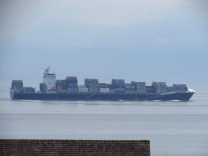 Photo of HAMMONIA VIRGINIA ship