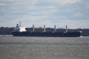 Photo of ARVIKA ship