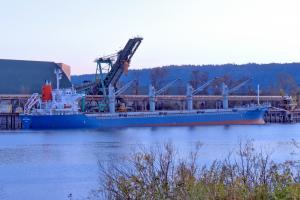 Photo of MAPLE OCEAN ship