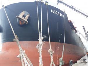 Photo of PEGASOS ship