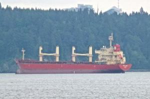 Photo of PAN AMBER ship