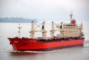 Photo of PAN BONITA ship