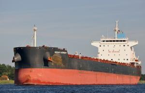 Photo of INDIAN HARMONY ship