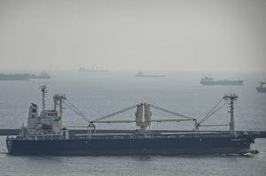 Photo of SHINLINE  12 ship