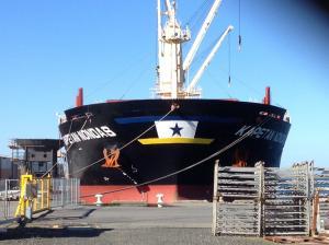 Photo of KAPETAN NONDAS ship