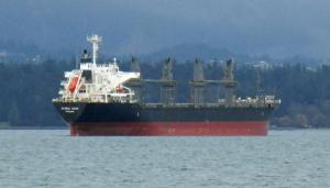 Photo of GLOBAL ECHO ship