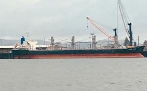 Photo of KING RICE ship
