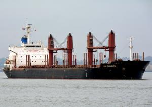 Photo of SEN TREASURE ship