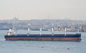 Photo of AMBER CHAMPION ship