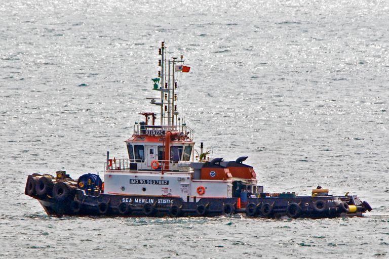 SEA MERLIN photo