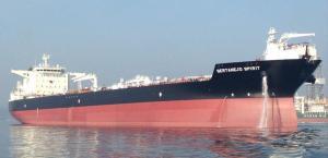 Photo of SERTANEJO SPIRIT ship