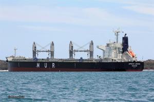 Photo of AFRICAN JACANA ship