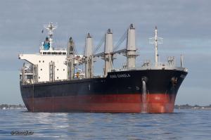 Photo of KING CANOLA ship