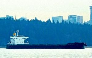 Photo of LOWLANDS ENERGY ship