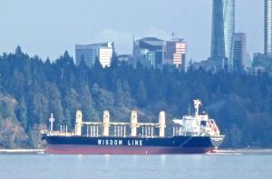 Foto del buque POAVOSA WISDOM VIII