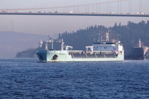 Photo of PETROBULK 1 ship