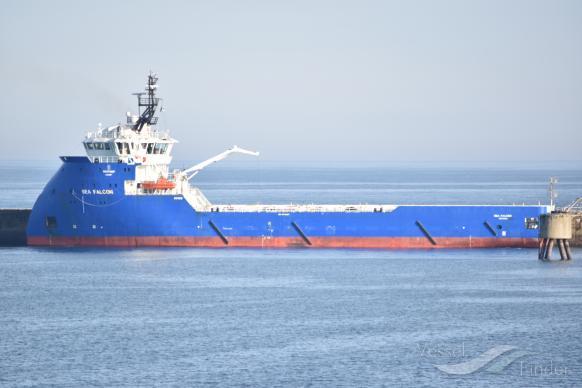 SEA FALCON photo