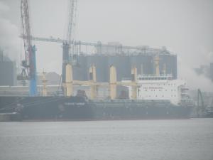 Photo of FAREAST HARMONY ship