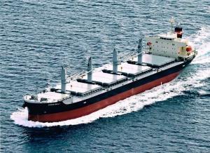 Photo of OCEAN RALLY ship