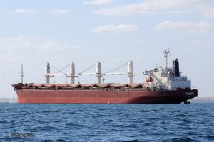 Photo of ECO SPLENDOR ship
