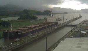 Photo of DL DAHLIA ship
