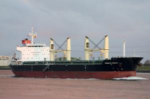 Photo of HONGXIN OCEAN ship