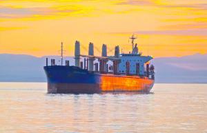 Photo of IPANEMA BEACH ship