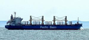 Photo of IMABARI LOGGER ship