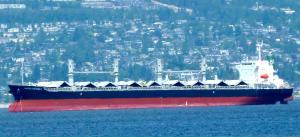 Photo of PACIFIC HARMONY ship