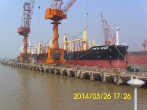 Photo of TOKYO SPIRIT ship