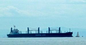 Photo of DAIWAN BRAVE ship