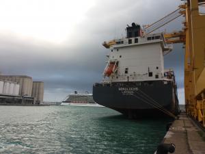 Photo of VIOLETA B ship