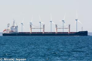 Photo of POLA MUROM ship