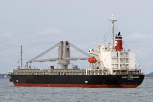 Photo of GLORY FORWARDER ship