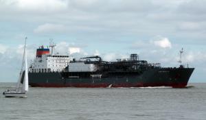 Photo of ZOE SCHULTE ship