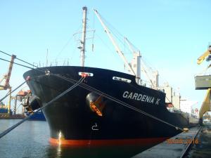 Photo of GARDENIA K ship