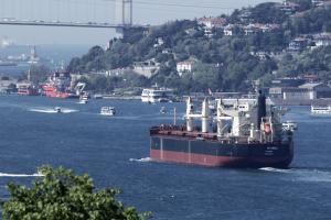 Photo of IN IWAGI ship