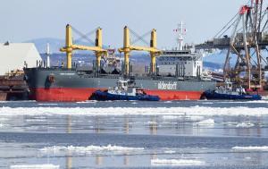 Photo of EMMA OLDENDORFF ship