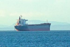 Photo of CSK LONGEVITY ship