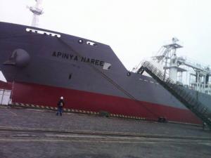 Photo of APINYA NAREE ship