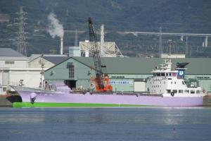 Photo of CHIYOMARU ship