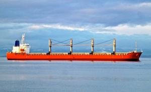 Photo of ZHONG XIN PEARL ship