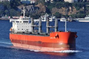 Photo of GLOBAL VISION ship