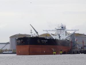 Photo of NEW TRIUMPH ship