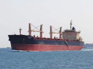 Photo of YOUNG GLORY ship
