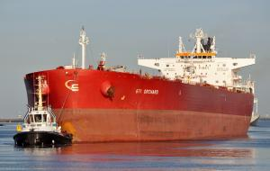 Photo of STI ORCHARD ship