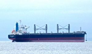 Photo of WEST TREASURE ship