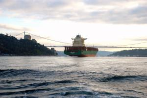 Photo of MAERSK DANUBE ship