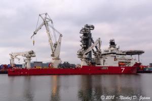 Photo of SEVEN ARCTIC ship